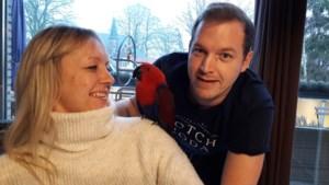 """Buurman vindt vermiste edelpapegaai Lady: """"Gek genoeg al de tweede papegaai die ik uit de haag haal"""""""