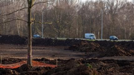 32,5 hectare bos gekapt voor nieuwe projecten, maar 29 hectare gecompenseerd