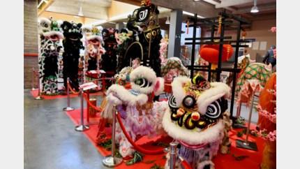 """Chinese gemeenschap viert overgang naar Jaar van de Rat: """"Het coronavirus zal ons nieuwjaar niet vergallen"""""""