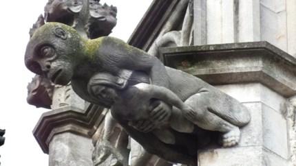 Mechelen heeft zijn eigen King Kong op Sint-Rombouts