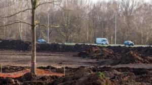 3,2 hectare bos gekapt voor nieuwe projecten, maar 2,9 hectare gecompenseerd