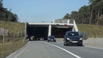 Het grootste Kempense verkeersdossier: noord-zuidverbinding redde Kasterlee na twintig jaar van verkeerschaos