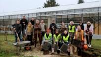 250.000 euro voor groenere speelplaatsen in twaalf Kempense scholen