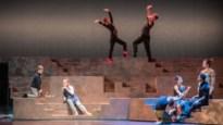 """Basisschool Prins Dries en Koninklijke Balletschool Antwerpen willen in heel het land talent scouten: """"Professioneel ballet, dat is topsport"""""""