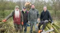 Vrijwilligers zetten naar aloude traditie wilgen aan Moerbeemden kort