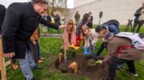 """Kinderen planten Anne Frankboom aan Kazerne Dossin: """"Hiermee maken we haar verhaal nog tastbaarder"""""""