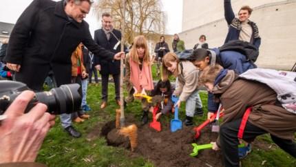 Kinderen planten Anne Franckboom aan