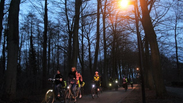 Vleermuisvriendelijke verlichting helpt fietsers 's nachts door Vrijbroekpark