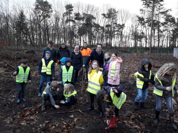 Kinderen planten loofbos waar vroeger 'kerstbomenbos' stond in Franciscanessenpark