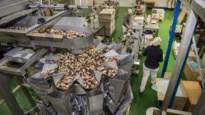 """Ranobo importeert al 25 jaar noten en gedroogde vruchten: """"Op vakantie ga ik in supermarkten naar noten kijken"""""""