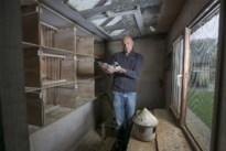 Roemenen krijgen dertig maanden cel voor diefstal van prijsduiven