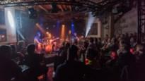 Zeven muziekcafés in de Kempen: heupwiegen of volledig losgaan?