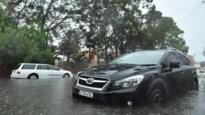 Stortregens doven grote bosbrand in Australië, maar leiden wel tot zware overstromingen