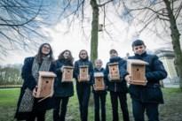 Oorlog aan de eikenprocessierups: provincie hangt honderd nestkastjes voor mezen in Rivierenhof