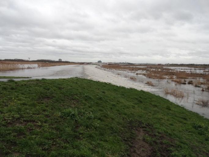 Overstromingsgebied aan Zennegat eerste keer volgelopen