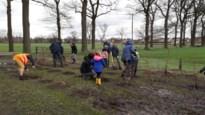 Duizend bomen geplant op nieuwe evenementenweide