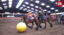 Oefenpotje trekpaardenvoetbal in Merksplas: dat gaat zo