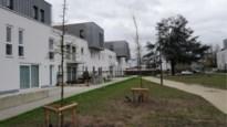"""Stad plant bomen en groen in woonwijken: """"Grote ecologische meerwaarde"""""""