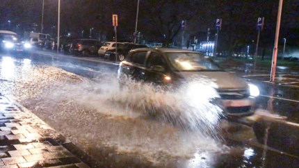 LIVE. Storm Dennis: opgelet voor stevige rukwinden en felle buien, risico op watergladheid