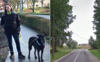 """Al drie honden gedood met bijzonder zwaar vergif: """"Amper 10 minuten tussen eerste symptomen en overlijden"""""""