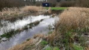 Slow Cabin niet verwijderd door wateroverlast