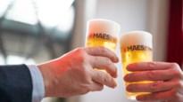 Brouwerij Alken Maes introduceert herbruikbare bekers