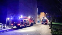 Brand beschadigt mesttransportsysteem in kippenstal