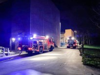 Brand beschadigt mesttransportsysteem in kippenstal