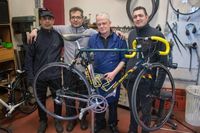Fietsatelier van De Kringwinkel herstelt 12.500ste fiets (een vintage Eddy Merckx met stalen kader)