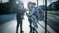 Stad lanceert campagne tegen snelheidsduivels: bewoners moeten zone 30 zichtbaar maken