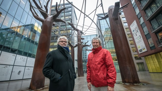 """Kunstwerk op Kievitplein raakt niet af zoals gepland: """"Baobabs niet goed gebouwd om groen op te laten gedijen"""""""