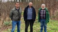 CD&V ziet nieuwe hondenlosloopzone in Halle liever op andere plek