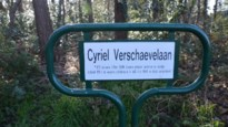 Wijziging Cyriel Verschaevelaan goedgekeurd, maar niet unaniem