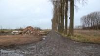 """Oppositiepartij Doel 2020 hekelt bomenkap langs Drijdijk: """"Gebrek aan respect voor polderdorpen"""""""