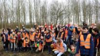 Kinderen planten bomen in speelbos als vervanging voor zieke essen