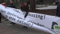 """Actiegroep protesteert aan provinciehuis tegen opvulling kleiputten: """"Misdadig om zoveel bomen te kappen"""""""