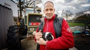 De Dierenhoeve furieus over nieuw reglement dat verkoop van dieren voortaan verbiedt op Zemstse jaarmarkt