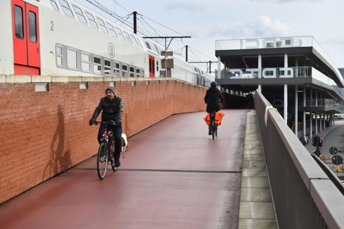 Fietsersbond verzamelt klachten fietsbrug
