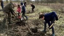 Leerlingen Scheppers planten bomen aan