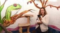 """Sabine Slaets verlaat Mechelse Dierenbescherming: """"De moeilijkste beslissing van mijn leven"""""""