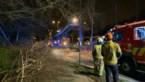 Omgewaaide boom hindert tramverkeer