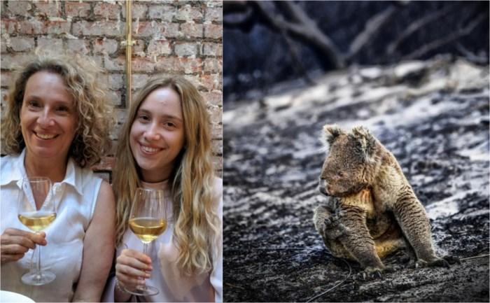 """Antwerpenaren helpen om Australische dieren te redden na bosbranden: """"Auto vol flesjes water en fruit naar koala's gebracht"""""""