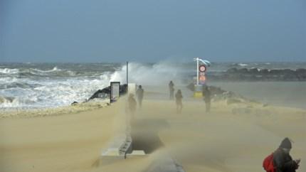 Derde Belgische weekendstorm op rij is een feit: code geel afgekondigd, noodnummer 1722 geactiveerd