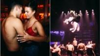 Sexy dansers, technische hoogstandjes en één bloot achterwerk in exclusieve spiegeltent in Oostmalle