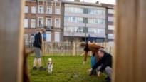 """Tiende hondenweide opent op Speecqvest: """"In elke wijk eentje"""""""
