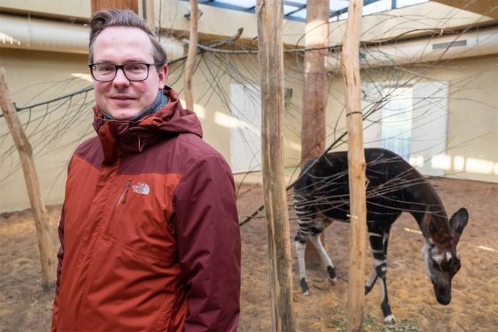 """Curator zoogdieren Antwerpse Zoo en Planckendael verhuist naar Berlijn: """"Ik kom zeker nog eens op bezoek"""""""