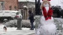 Daar zijn de eerste sneeuwpoppen: Kempen bedekt onder witte laag