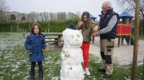 Straffe sneeuw: sneeuwpoppen staan nog altijd overeind