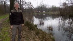 Natuurherstel in Vallei van Caliebeek: aankoop vijf hectare grond vergroot wandelplezier in Tielen