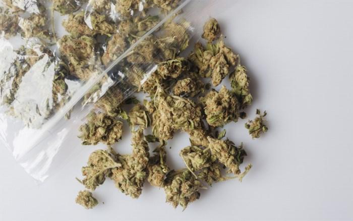Politie zet wagen aan de kant en vindt meer dan 1 kilogram cannabis